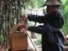Form\'Action Apiculture au Laos