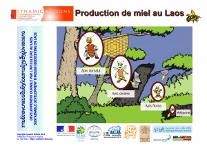 Apiculture_0033_couv_EN-FR-LA_lao-uniext-page001